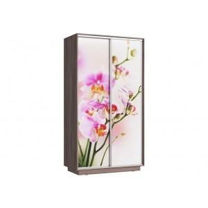 Шкаф купе 2х Орхидея 1200мм